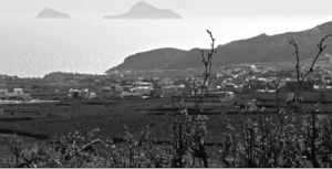 hatzidakis-winery-skyline