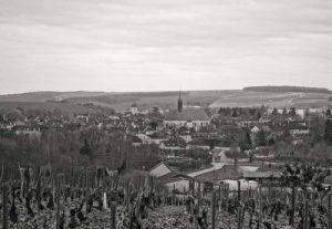 patrick-piuze-view