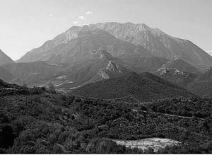 scalvos-wines-land