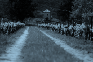 troupis-winery-road